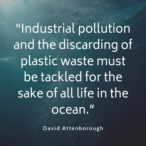 Industrial pollution quote David Attenborough