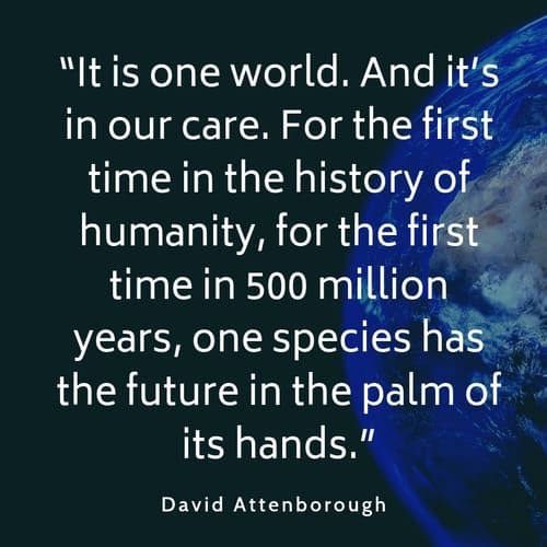 Pollution quote David Attenborough