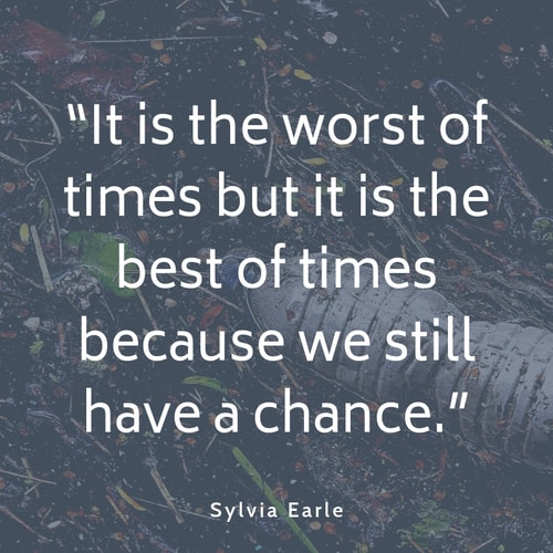 Pollution quote Sylvia Earle